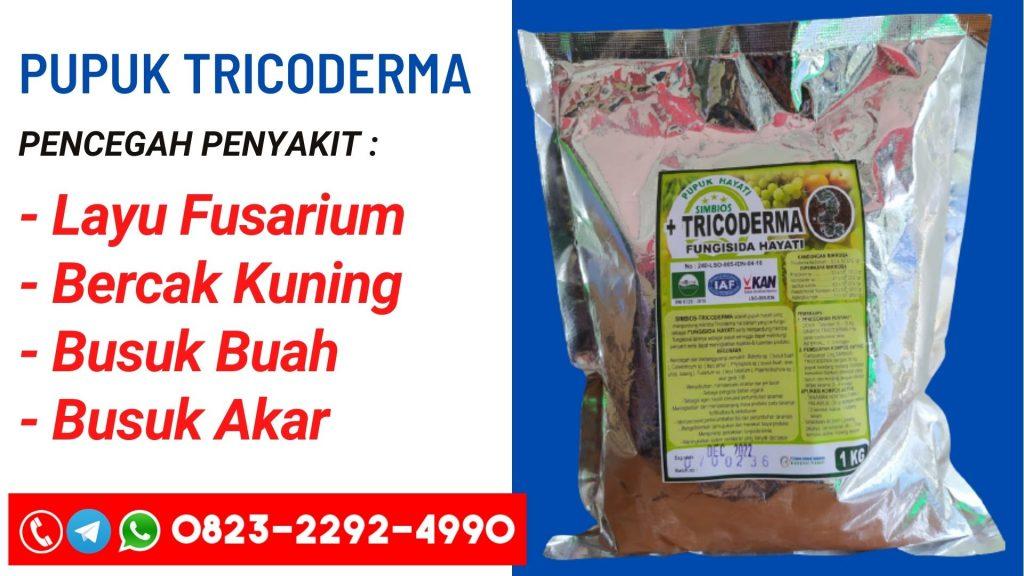 GROSIR Pupuk layu fusarium bawang Lubok Antu, HARGA Pupuk layu fusarium bawang putih Kampung Melayu, Pupuk layu fusarium pada bawang merah Tabau, Pupuk fungisida layu fusarium bawang merah Tawau, Pupuk pengendalian layu fusarium pada bawang merah, Pupuk jurnal layu fusarium pada bawang merah, Pupuk jurnal layu fusarium pada bawang merah, Pupuk gambar layu fusarium, Pupuk pengobatan layu fusarium, Pupuk pengertian layu fusarium, Pupuk layu fusarium cabai